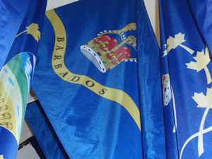 Vice Regal Standard of Barbados